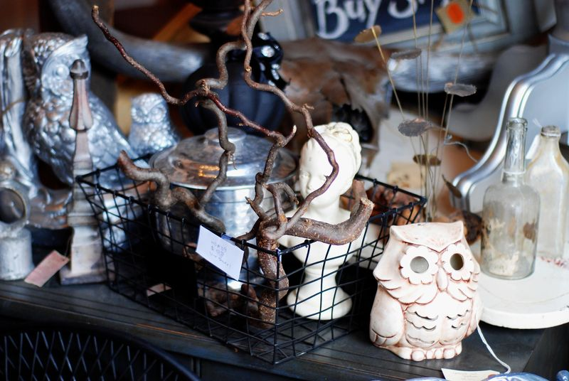 Spooky halloween decor owls