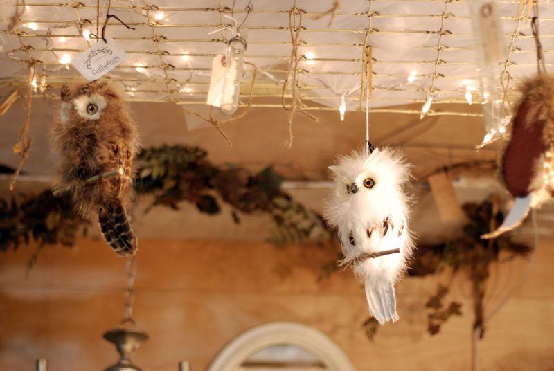 Owls halloween autumn fluffy